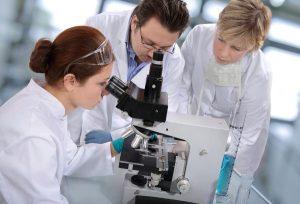 (Ελληνικά) Πρακτική Άσκηση στον Ευρωπαϊκό Οργανισμό Χημικών  Προϊόντων